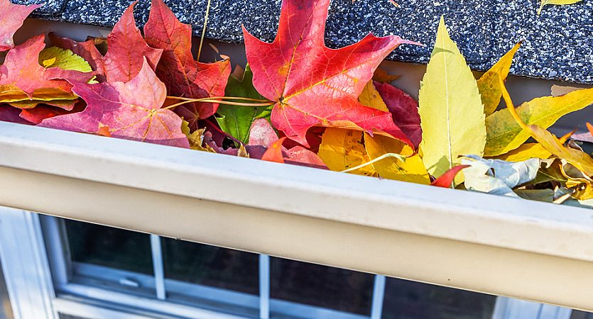 Fall sell the house